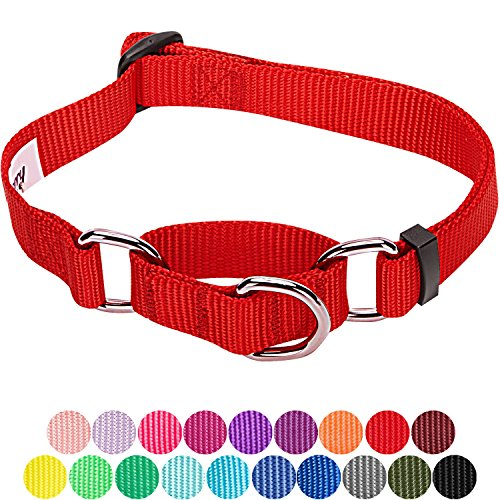 ors Safety Training Martingale Dog Collar, Rouge Red, Small, Heavy Duty Nylon Adjustable Collars for Dogs ()