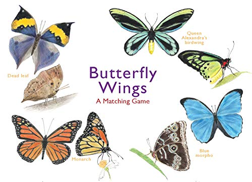 Butterfly Bingo - Butterfly Wings: A Matching Game