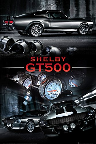 Ford Shelby Gt X In