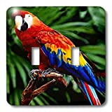 lsp_576_2 Birds - Scarlet Macaw - Light Switch Covers - double toggle switch