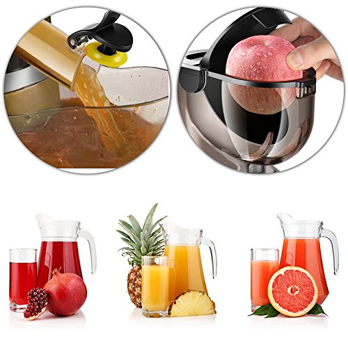 Flexzion Masticating Juicer Machine - Slow Cold Press Juice Extractor Maker Electric Juicing ...