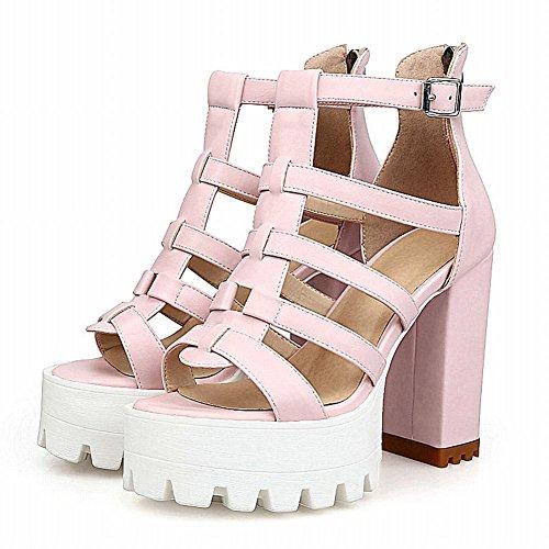 Carolbar Womens Zip Buckle Fashion Party Date Platform Chic Chunky High Heel Dress Sandals Pink zrQoVH