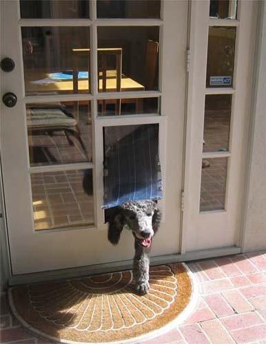 Security Boss MaxSeal French Door Mount Pet Door - Dual Flap Door Mount Dual Flap