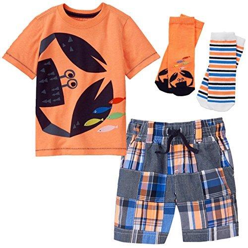 Poplin Cape (Gymboree Toddler Boys' 3-Piece Bundle - Crab Tee, Patchwork Shorts & Socks Set (5T))