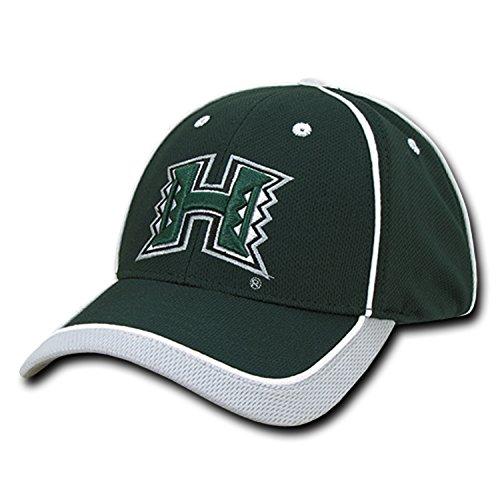 University of Hawaii Rainbow Warriors Adjustable Jersey Mesh Baseball Ball Cap Hat