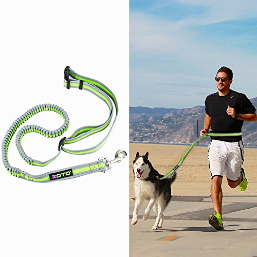 ZOTO Running Retractable Leashes Comfortable