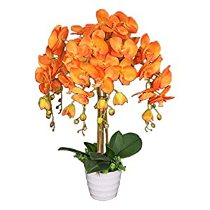 AMERIQUE Unique and Gorgeous Orange Orchid Artificial Silk Flower Plant, 2', Vivid 38