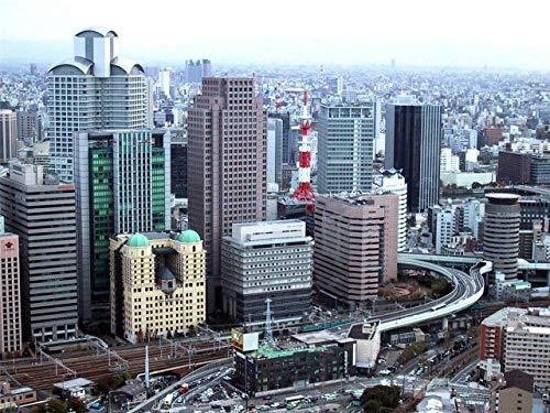 Home Comforts Peel-n-Stick Poster of Osaka Skyline Japan Kansai Honshu Kyoto Kobe Vivid Imagery Poster 24 x 16 Adhesive Sticker Poster Print