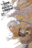 Is It Wrong to Try to Pick Up Girls in a Dungeon?, Vol. 11 (light novel) (Is It Wrong to Pick Up Girls in a Dungeon?)