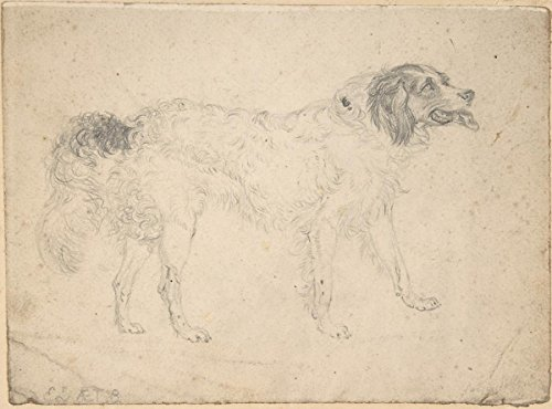 Historic Pictoric Fine Art Print | Sir Edwin Henry Landseer | Study of a Dog Facing Right | Vintage Wall Art | 14in x 11in