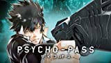 Tapestry all one single item drawn Taito Kuji Honpo PSYCHO-PASS C Award (japan import)