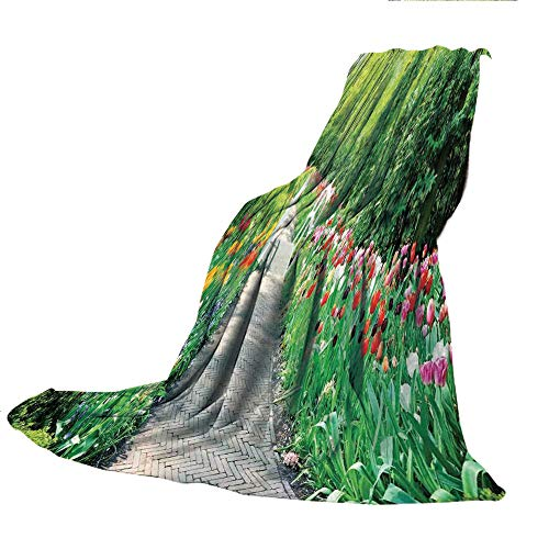 SCOCICI Comfortable Extra-Thick Blanket, Double-Sided Printing,Country Decor,Tulips in Keukenhof Gardens Path Along Colorful Flowers Trees Nature Picture,31.50