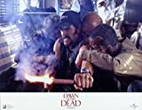 Dawn of the Dead - Movie Poster - 11 x 17