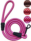 PetsCare Extra Thick Dog Rope Leash Strong and Durable Braided Nylon Rope for Small/Medium/Large Dogs, Pink