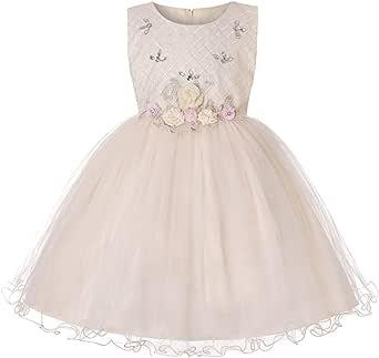 JIANLANPTT Girls' Big Vintage Dresses Child Party Host Bowknot Costume Wedding Ball Gown Show Dress