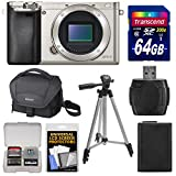 Sony Alpha A6000 Wi-Fi Digital Camera Body (Silver) with 64GB Card + Case + Battery + Tripod + Accessory Kit