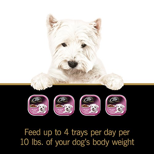 Pictures of Cesar Canine Cuisine Puppy Wet Dog Food 10114259 3