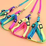 Pet-Tag-DZT1968-1PC-Nylon-Pet-Cat-Dog-Kitten-Adjustable-Colorful-Harness-Lead-Leash-Collar-Belt-Random-color