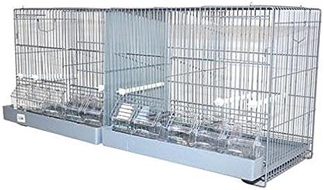 JAULA DE CRIA DE 1 METRO: Amazon.es: Productos para mascotas