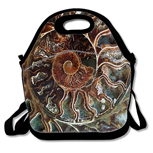 Fossilized Shell Neoprene Lunch Bag For Women Adults Kids,Reusable Lunch Box Lunch Tote Picnic Insulated Travel Bag