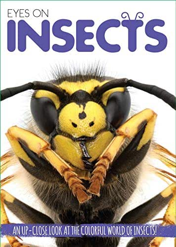 Eyes On Insects