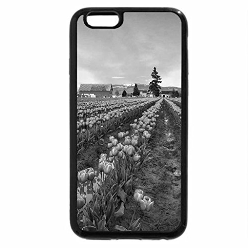 iPhone 6S Plus Case, iPhone 6 Plus Case (Black & White) - Tulips Fields in the Evening