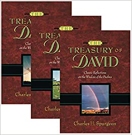 Image result for treasury of david