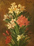 Rot und Weiss bluhender Oleander by Pierre Adrien Chabal-Dussergey 29' x 39' Giclee Canvas Art Print