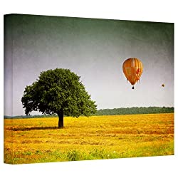 Art Wall Dragos Dumitrascu Wings Of October Gallery Flat Wrapped Canvas Art, 32 By 48-inch