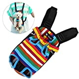 Petacc Colorful Pet Front Carrier Bag Lightweight Dog Carrier Backpack Adjustable Legs out Front Carrier Bag with Shoulder Pad, Stripe Pattern and Practical Zippers, Suitable for Small-sized Dog (M)