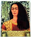img - for The World of Frida Kahlo: The Blue House book / textbook / text book