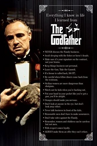 The Godfather Everything I Know in Life Movie Poster 24x36
