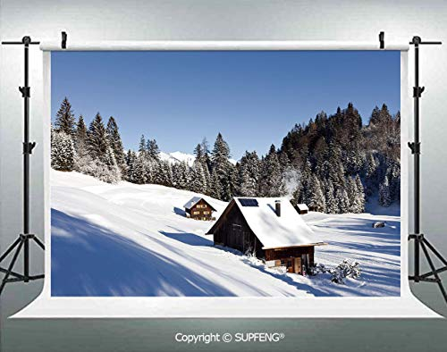 Photo Backdrop Log Cabins in The Mountains Sunny Winter Day Rural Scene Holiday Vacation Decorative 3D Backdrops for Interior Decoration Photo Studio ()