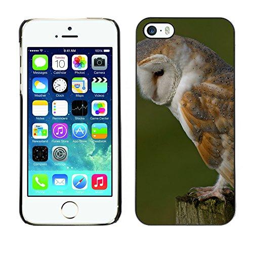 Premio Sottile Slim Cassa Custodia Case Cover Shell // F00032596 Fluffy owl // Apple iPhone 5 5S 5G