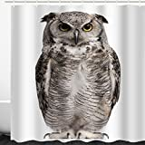 Funny Shower Curtain Animal Decor, Cute Owl Bird Illustration on White Background Unique Art Printing,Polyester Fabric Waterproof Mildew Resistant Bathroom Curtain ,White and Brown, 72 x 72 inch