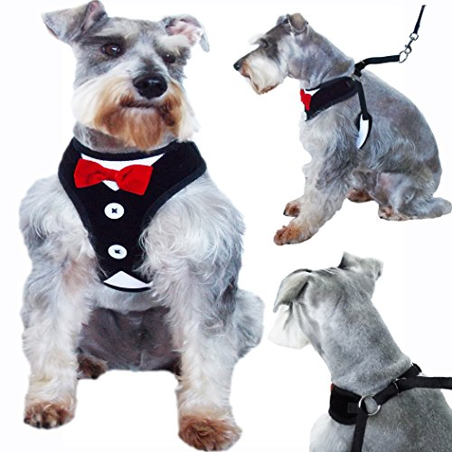 WwWSuppliers Red Bow Tie Black & White Tuxedo Dress Suit Adjustable Training Harness for Dogs and Puppies with Attachment Ring (Extra Small)