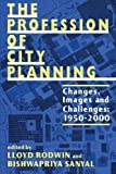The Profession of City Planning 9780882851655