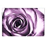 Startonight Canvas Wall Art Purple Rese Flower Abstract, Dual View Surprise Artwork Modern Framed Ready to Hang Wall Art 100% Original Art Painting 23.62 X 35.43 inch