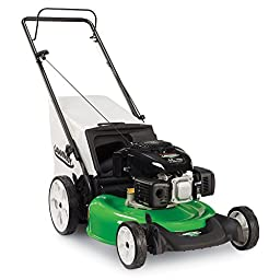 Lawn-Boy 10730 Kohler High Wheel Push Gas Walk Behind Lawn Mower, 21-Inch