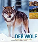 Der Wolf: Ein Raubtier in unserer Nähe