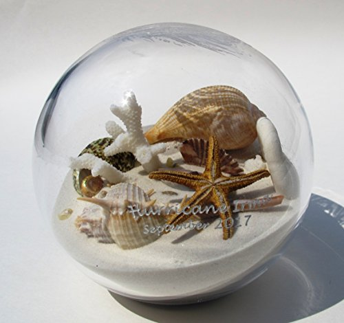 Beachball Sandglobe Hurricane Irma Sand and Seashell Sandglobe (4 inch diameter, (Shell Hurricane)