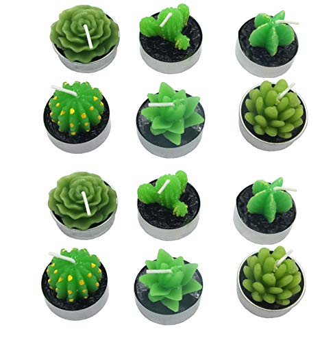 12 PCS Cute Succulent Cactus Candles Smokeless Cactus Candles Handmade Delicate Decorative Candles for Valentine's Day Birthday Wedding Party Spa Home Decoration Gifts]()