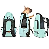 K9 Sport Sack AIR | Pet Carrier Backpack for Small and Medium Dogs | Front Facing Adjustable Pack | Veterinarian Approved Safe Bag for Travel to Carry Canine (Small, Summer Mint)