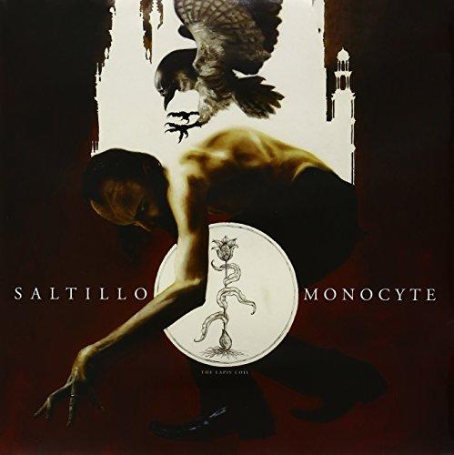 monocyte-the-lapis-coil