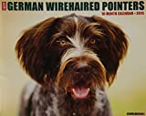 Just German Wirehaired Pointers 2015 Wall Calendar