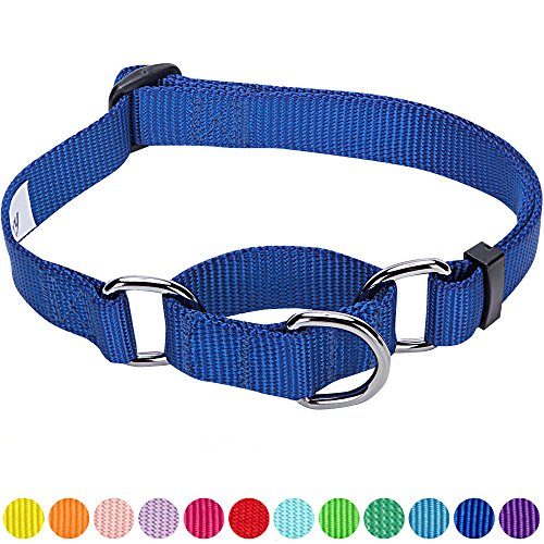 Blueberry Pet 12 Colors Safety Training Martingale Dog Collar, Royal Blue, Large, Heavy Duty Nylon Adjustable Collars for Dogs