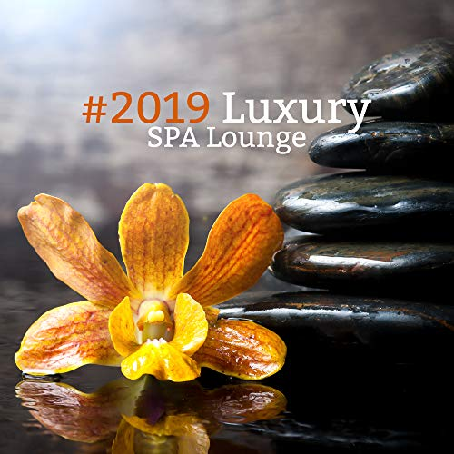 #2019 Luxury SPA Lounge - Chill Out for Spa & Wellness, Massage, Relax, Zen Lounge, Ultimate Wellness Resort Boutique (The Sex Spa)