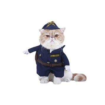 petacc Pet Kostüm Bekleidung Pet Outdoor Kleidung: Amazon.de ...