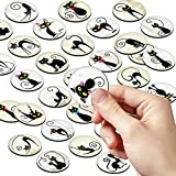 Cat Magnets for Refrigerator–Cat Items for Cat