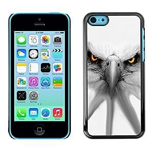 TECHCASE**Cubierta de la caja de protección la piel dura para el ** Apple iPhone 5C ** Eagle White Patriotism America Symbol